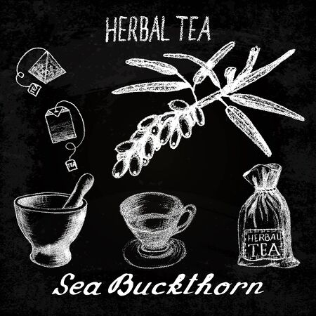 origanum: Sea buckthorn herbal tea. Chalk board set of elements on the basis hand pencil drawings. Sea buckthorn, tea bag, mortar and pestle, textile bag, cup. For labeling, packaging, printed products Illustration