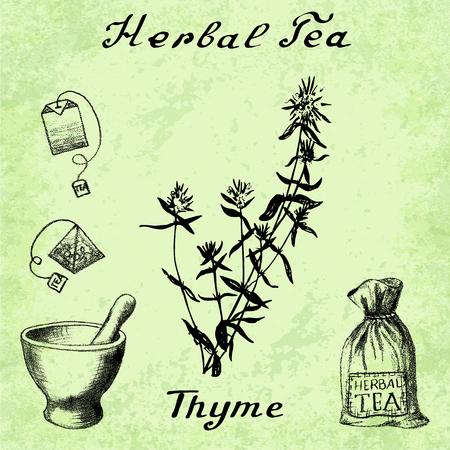 tea bag: Herbal tea, thyme, mortar and pestle, bag, tea bag. illustration. Botanical drawing. Pencil drawing Illustration