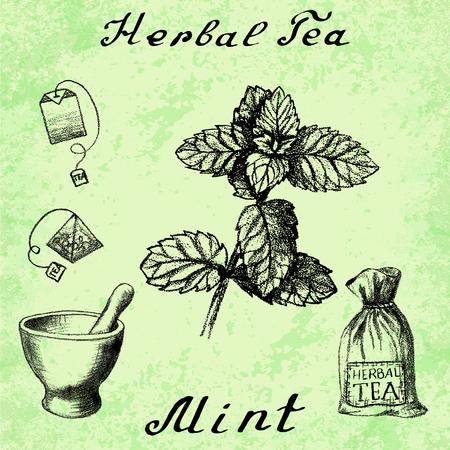 tea bag: Herbal tea, mint, mortar and pestle, bag, tea bag. illustration. Botanical drawing. Pencil drawing