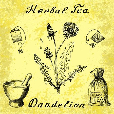 herbal tea: Dandelion sketch botanical illustration. drawing. Herbal tea elements - tea bag, bag, mortar and pestle. Medical herbs. Lettering in English languages. Grunge background