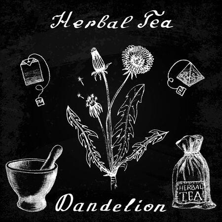 herbal tea: Dandelion hand drawn sketch botanical illustration. Herbal tea elements - tea bag, bag, mortar and pestle. Medical herbs. Lettering in English languages. Effect chalk board