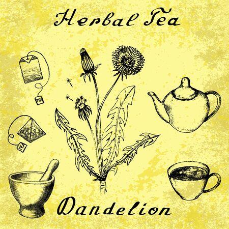 herbal tea: Dandelion hand drawn sketch botanical illustration. Herbal tea elements - cup, teapot, kettle, tea bag, bag, mortar and pestle. Medical herbs. Lettering in English languages. Grunge background