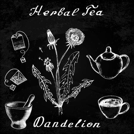 herbal tea: Dandelion hand drawn sketch botanical illustration. Herbal tea elements - cup, teapot, kettle, tea bag, bag, mortar and pestle. Medical herbs. Lettering in English languages. Effect chalk board