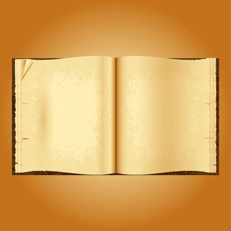yellowed: Old open book. Yellowed pages wrinkled. Grunge background. Vector illustration. Space for your text