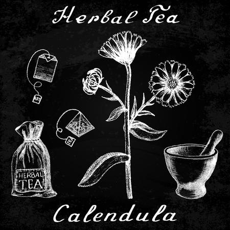 calendula: Calendula hand drawn sketch botanical illustration. Utensils for tea. Vector illustation. Medical herbs. Effect of chalk board. Grunge background Illustration