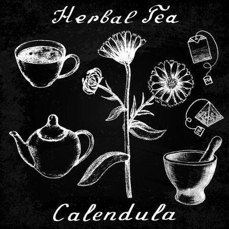 officinalis: Calendula hand drawn sketch botanical illustration. Utensils for tea. Vector illustation. Medical herbs. Effect of chalk board. Grunge background Illustration