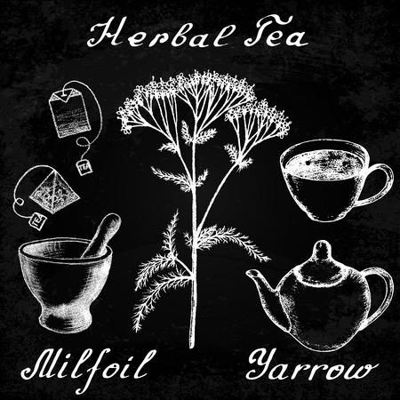 healing hands: Yarrow Achillea millefolium hand drawn sketch botanical illustration. Utensils for tea. illustation. Medical herbs. Effect of chalk board. Grunge background
