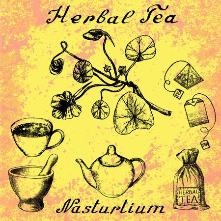 nasturtium: Nasturtium drawn sketch botanical illustration. illustation. Medical herbs. Lettering in English and Russian languages
