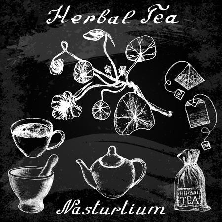 nasturtium: Nasturtium drawn sketch botanical illustration. illustation. Medical herbs.  Effect of chalk board. Grunge background