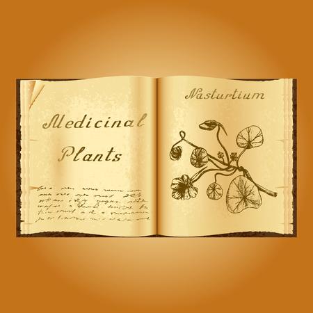 herbolaria: Capuchina. Ejemplo botánico. plantas medicinales. Viejo herbolario libro abierto. fondo del grunge. ilustración Vectores