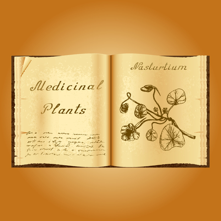 herbalist: Nasturtium. Botanical illustration. Medical plants. Old open book herbalist. Grunge background. illustration