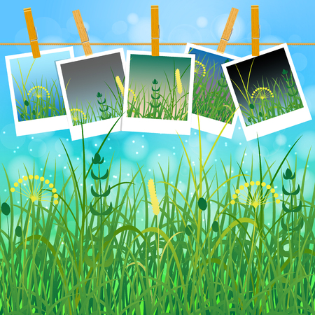 Concept Summer. Sky, blur, field grass. Summer photos on clothespins on a rope. You can insert your photos