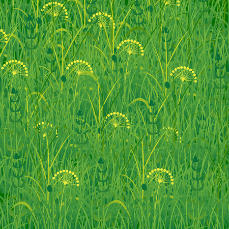 A Background of grass on  Plants meadows and fields.