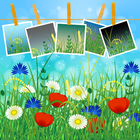 Concept Summer. Sky, blur, meadow with herbs and flowers. Summer photos on clothespins on a rope. You can insert your photos