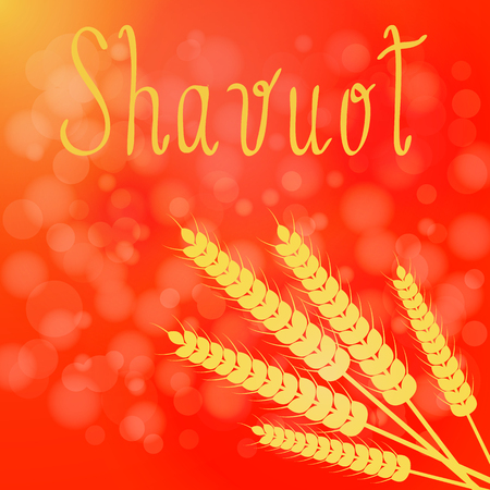 Shavuot. Concept of Judaic holiday. Red background, ears of wheat, text name of the holiday Stock Illustratie