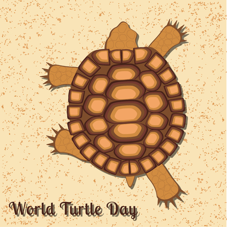 World Turtle Day. Reptile turtle. Land tortoise. View from above. Walking, running over the sand