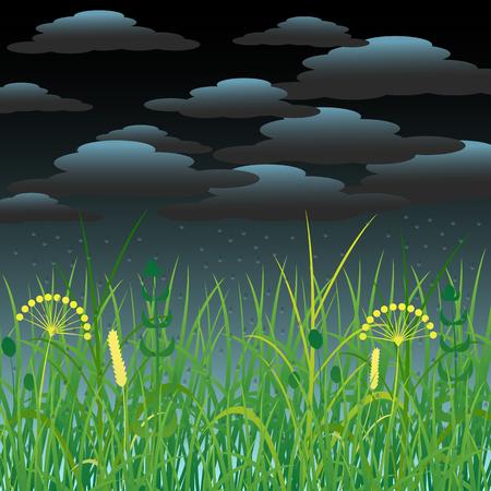 Concept Summer. Storm clouds, rain. Meadow landscape