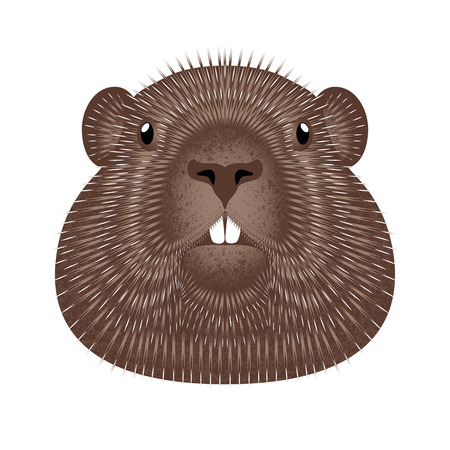 Groundhog Day. Concept National holiday in the USA and Canada. Vector illustration of the face of the animal groundhog. Grunge texture. Illustration