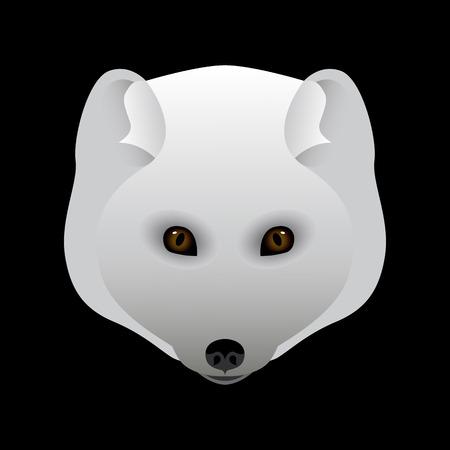 Arctic fox. Portrait, head. Predatory animal of the north. Vector illustration