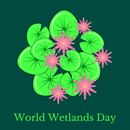 World Wetlands Day. Ecological event. Protection of Nature. Surface of the swamp with water lilies