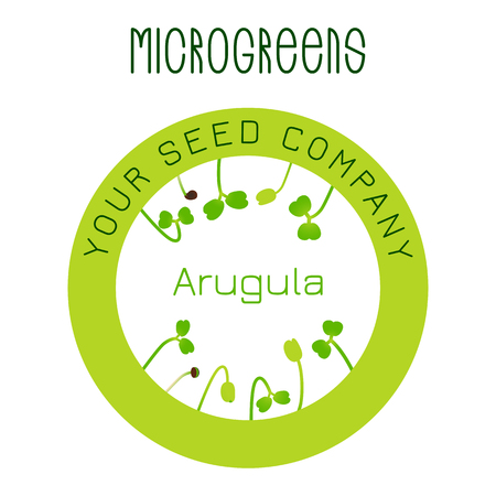 Microgreens Arugula. Seed packaging design, round element in the center Vetores