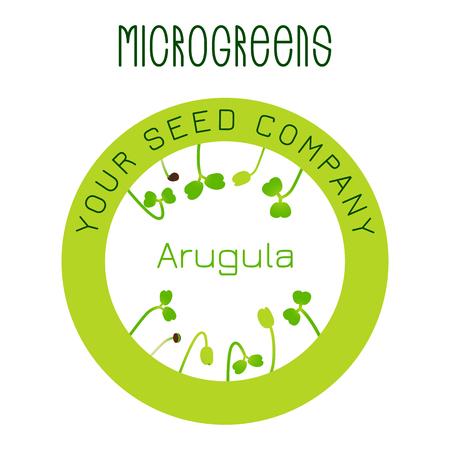 Microgreens Arugula. Seed packaging design, round element in the center Standard-Bild - 116621394
