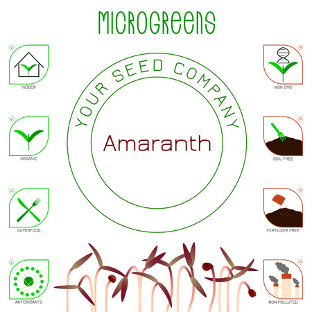 Microgreens Red Amaranth. Seed packaging design. Icons - indoor, organic, superfood, antioxidants, non gmo, soil free, fertilizer free, non polluted Ilustracja