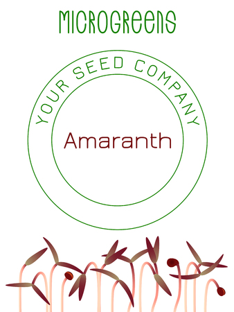 Microgreens Red Amaranth. Seed packaging design. Vitamin supplement, vegan food Ilustrace