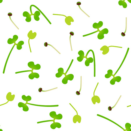 Microgreens Broccoli. Sprouting seeds of a plant. Seamless pattern. Isolated on white. Vitamin supplement, vegan food Foto de archivo - 124843830