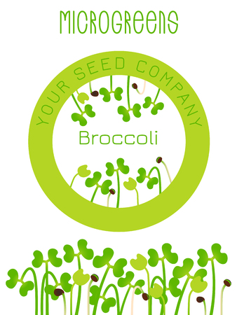 Microgreens Broccoli. Seed packaging design, round element in the center. Sprouting seeds of a plant. Vitamin supplement, vegan food