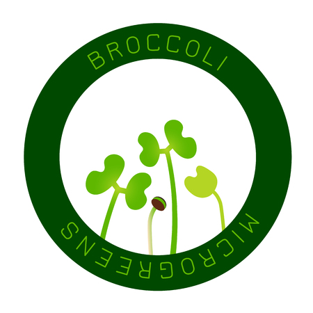 Microgreens Broccoli. Seed packaging design, round element in the center. Vitamin supplement, vegan food