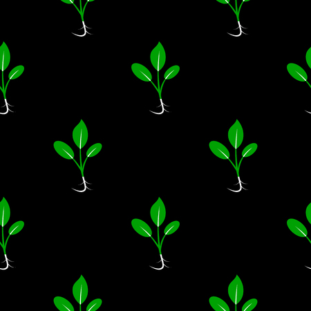 Microgreens. Sprouting seeds of a plant. Seamless pattern. Vitamin supplement, vegan food. Black background. Symmetrical arrangement
