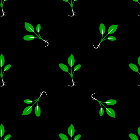 Microgreens. Sprouting seeds of a plant. Seamless pattern. Vegan food. Black background Illustration
