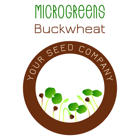 Microgreens Buckwheat. Seed packaging design, round element in the center. Vitamin supplement, vegan food Stock Vector - 124992894
