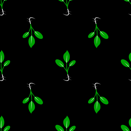 Microgreens. Sprouting seeds of a plant. Seamless pattern. Vitamin supplement. Black background