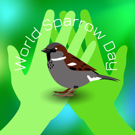 World Sparrow Day. Sparrow on green palms. Green Blur Background. Concept of ecological events. Protection of birds. Foto de archivo - 124381123