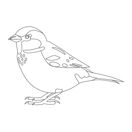 Sparrow. Simple contour vector illustration isolated on white Foto de archivo - 124381124