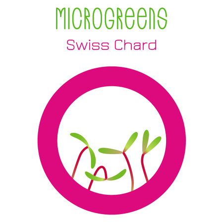 Microgreens Swiss Chard. Seed packaging design, round element in the center. Vitamin supplement, vegan food