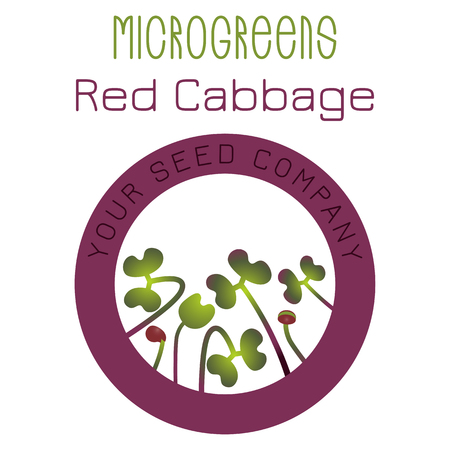 Microgreens Red Cabbage. Seed packaging design, round element in the center. Vitamin supplement, vegan food