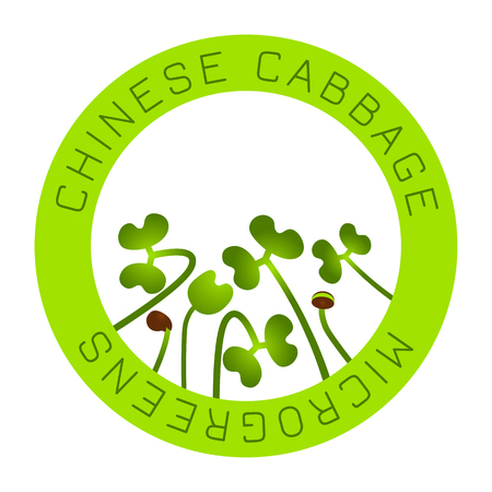 Microgreens Chinese Cabbage. Seed packaging design, round element in the center. Vitamin supplement, vegan food