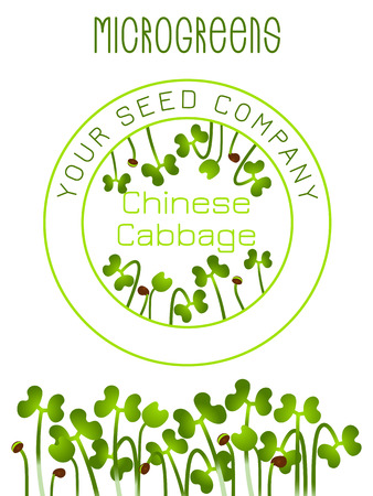 Microgreens Chinese Cabbage. Seed packaging design. Vitamin supplement, vegan food