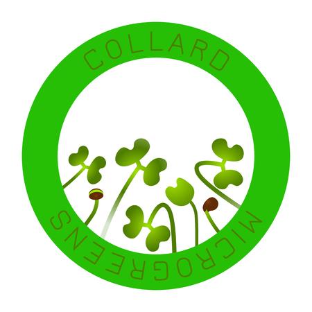 Microgreens Collard. Seed packaging design, round element in the center. Vitamin supplement, vegan food