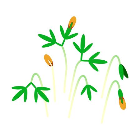Microgreens Cress. Bunch of plants. Vitamin supplement, vegan food Illustration