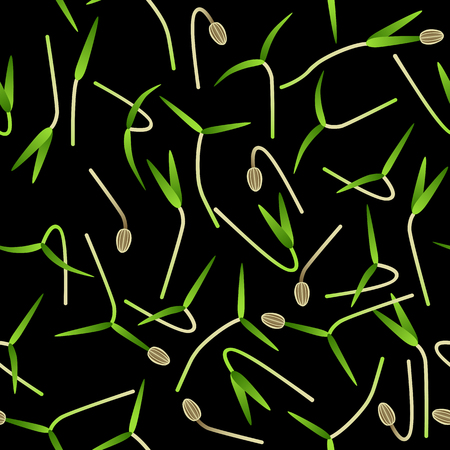 Microgreens Dill. Sprouting seeds of a plant. Seamless pattern. Vitamin supplement, vegan food