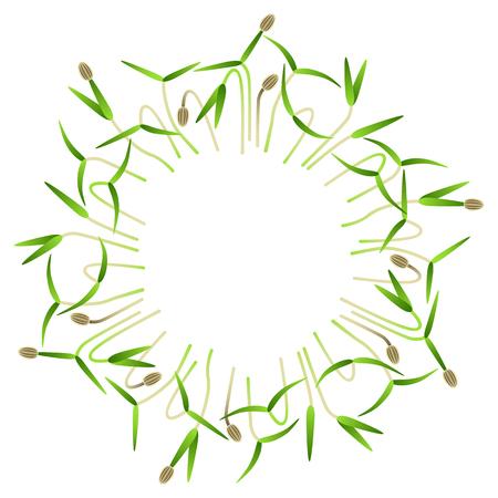 Microgreens Dill. Arranged in a circle. Vitamin supplement, vegan food Illustration