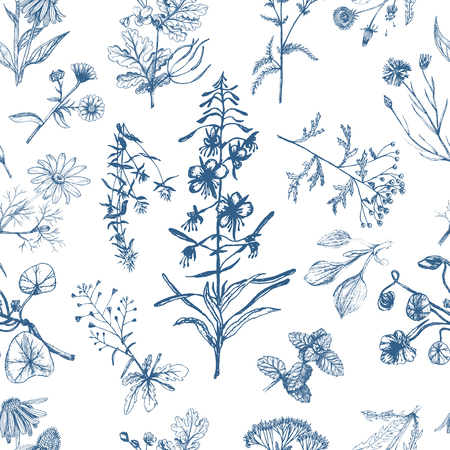 Medicinal herbs seamless pattern indigo.
