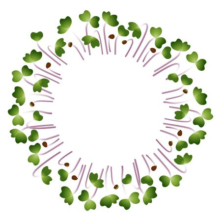 Microgreens Kale. Arranged in a circle. Vitamin supplement, vegan food Illustration