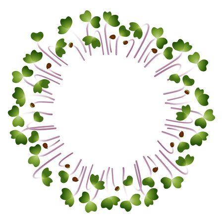 Microgreens Kale. Arranged in a circle. Vitamin supplement, vegan food Illustration
