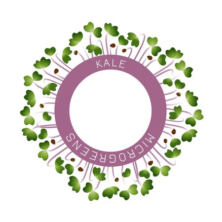 Microgreens Kale. Seed packaging design, round element in the center. Around him sprouts. Vitamin supplement, vegan food Illusztráció