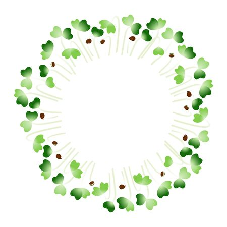 Microgreens Komatsuna. Arranged in a circle. White background 일러스트